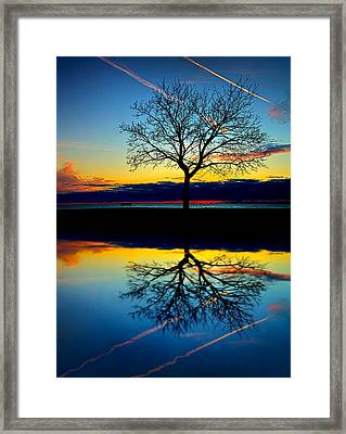 Vows Framed Print by Phil Koch