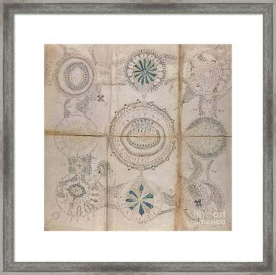 Voynich Astro 3x3 Framed Print