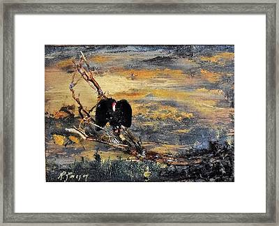 Vulture With Oncoming Storm Framed Print