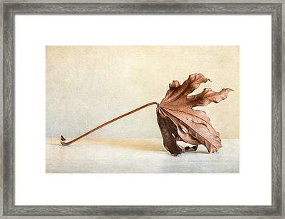 Wabi Sabi Framed Print