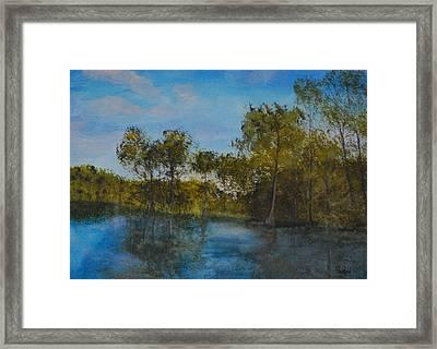 Waccamaw Breeze I Framed Print by Phil Burton