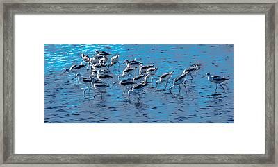 Wadding Framed Print