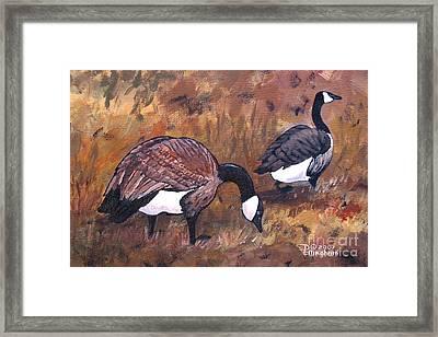 Waddle Waltz Framed Print by Diane Ellingham