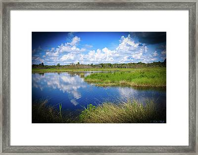 Wading Bird Way Framed Print