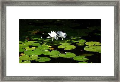 Wading Fairies Framed Print