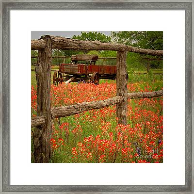 Wagon In Paintbrush - Texas Wildflowers Wagon Fence Landscape Flowers Framed Print