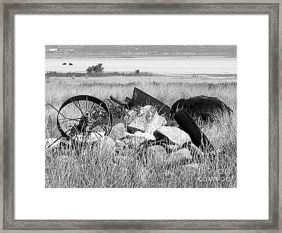 Wagon Wheels Framed Print by Lisa Schafer