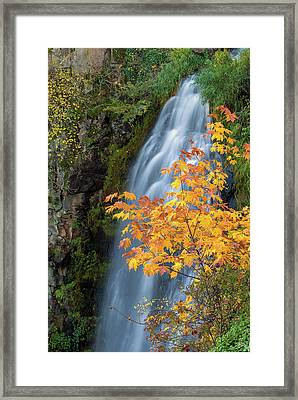 Wah Gwin Gwin Falls In Autumn Framed Print by David Gn
