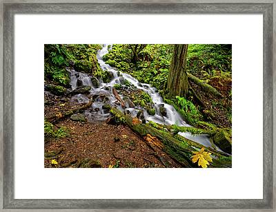 Framed Print featuring the photograph Wahkeena Falls by Jonathan Davison