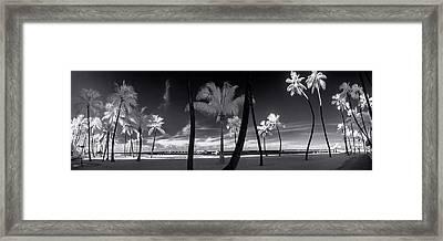Waikiki Beach Contrasts Framed Print by Sean Davey