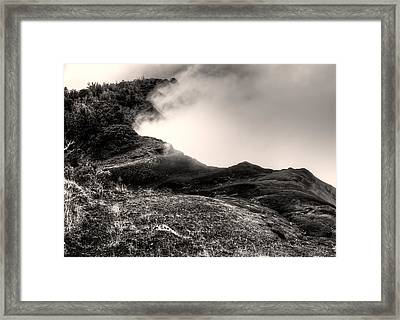 Waimea Early Morning Fog Framed Print by Natasha Bishop