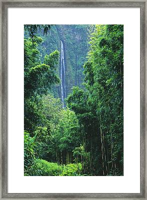 Waimoku Falls Framed Print by Dave Fleetham - Printscapes