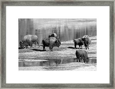 Wainto To Cross - Black And White Framed Print