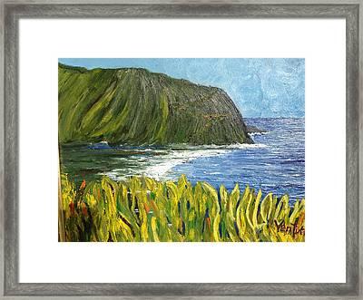 Waipio Valley Bay, Hawaii Framed Print