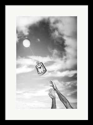 Flies Photographs Framed Prints