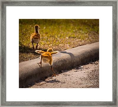 Wait For Me Framed Print by Zina Stromberg