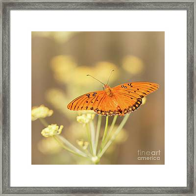 Wait Here Framed Print by Ana V Ramirez