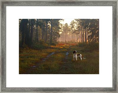 Wait Up Framed Print by Laura Ragland