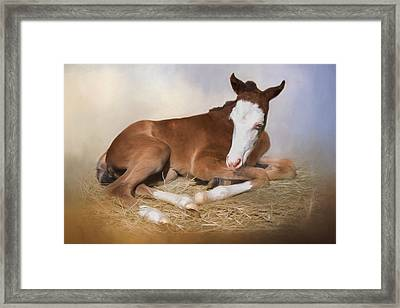 Waitin On A Second Wind Framed Print by Robin-Lee Vieira