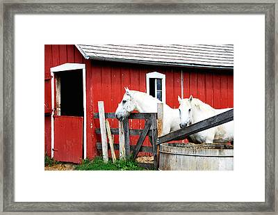 Waiting     Framed Print by Lyle  Huisken