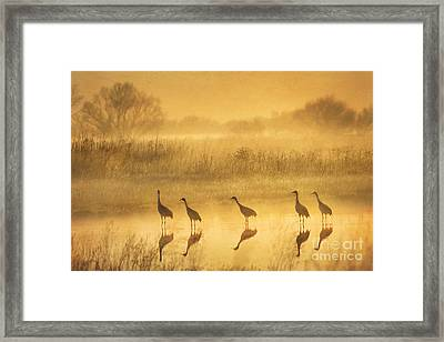 Waiting Framed Print by Alice Cahill