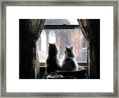 Waiting At The Window Framed Print