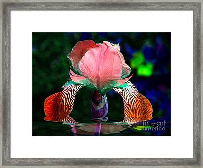 Framed Print featuring the photograph Waiting by Elfriede Fulda