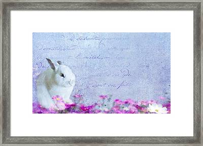 Waiting For Eggs Framed Print
