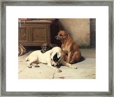 Waiting For Master Framed Print