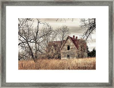 Waiting For New Owners Framed Print by E Mac MacKay