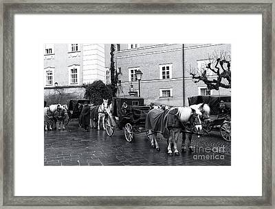 Waiting For Riders In Salzburg Framed Print by John Rizzuto