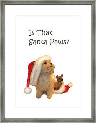 Waiting For Santa Paws Framed Print by Joni McPherson