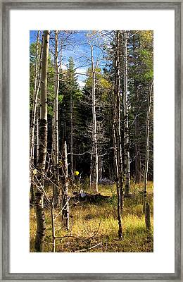 Waiting For Snow Sierra Nevada Autumn Larry Darnell Framed Print by Larry Darnell