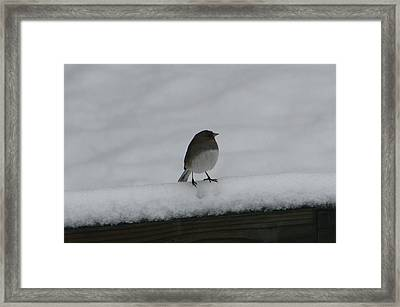 Framed Print featuring the digital art Waiting For Spring by Barbara S Nickerson
