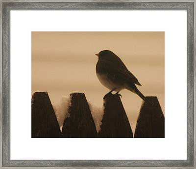 Waiting For Spring Framed Print by Dennis Curry