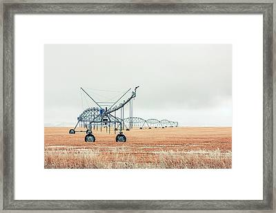 Waiting For Spring Framed Print by Todd Klassy