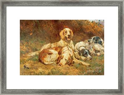 Waiting For The Guns  Framed Print by Thomas Blinks