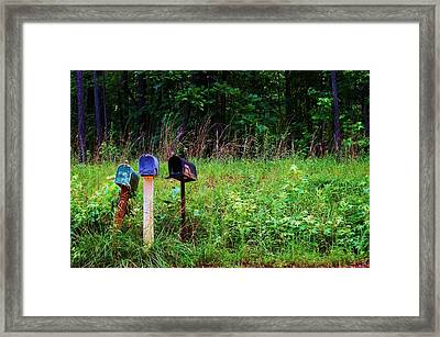 Waiting For The Mail Framed Print by Beverly Hammond