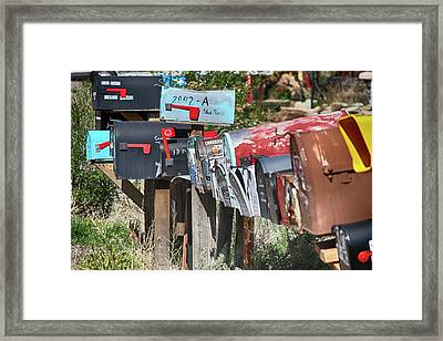 Framed Print featuring the photograph Waiting For The Mail by Marie Leslie