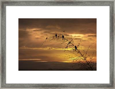Framed Print featuring the photograph Waiting For The Next Day by Gouzel -