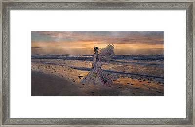 Waiting For The Sun Framed Print by Betsy Knapp