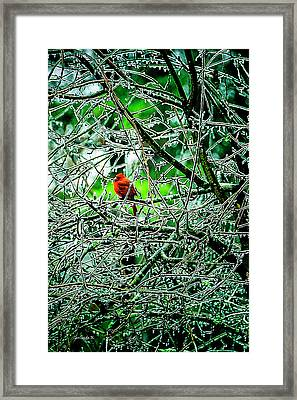 Waiting For The Thaw Framed Print by Gerlinde Keating - Galleria GK Keating Associates Inc