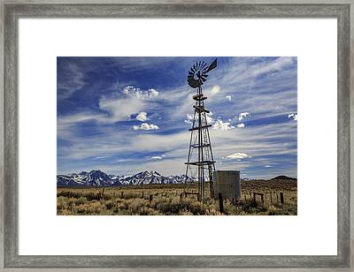 Waiting For The Wind Framed Print by Cat Connor