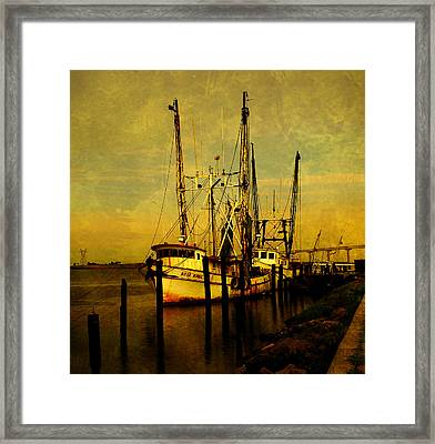Waiting For Tomorrow Framed Print by Susanne Van Hulst