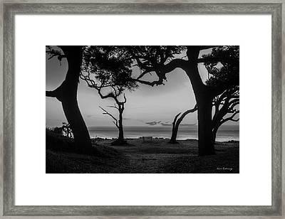 Waiting For You Driftwood Beach Jekyll Island Georgia Framed Print