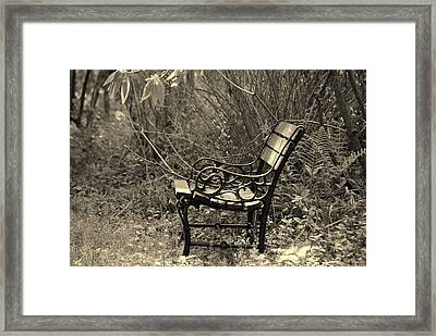 Waiting For You Framed Print by Susanne Van Hulst