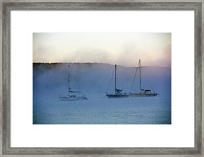 Waiting In The Fog Framed Print