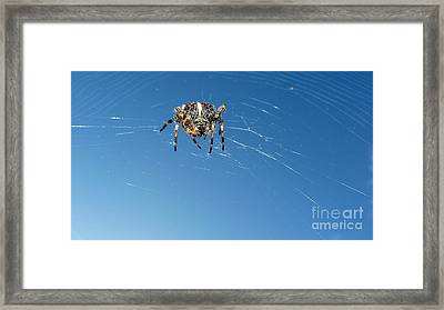 Framed Print featuring the photograph Waiting by Larry Keahey