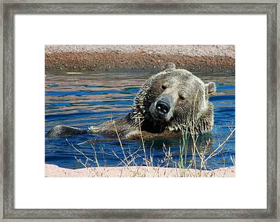 Waiting On Lunch Framed Print by Karen Wiles
