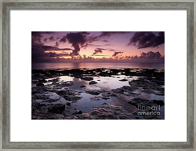 Waiting On The Light Framed Print